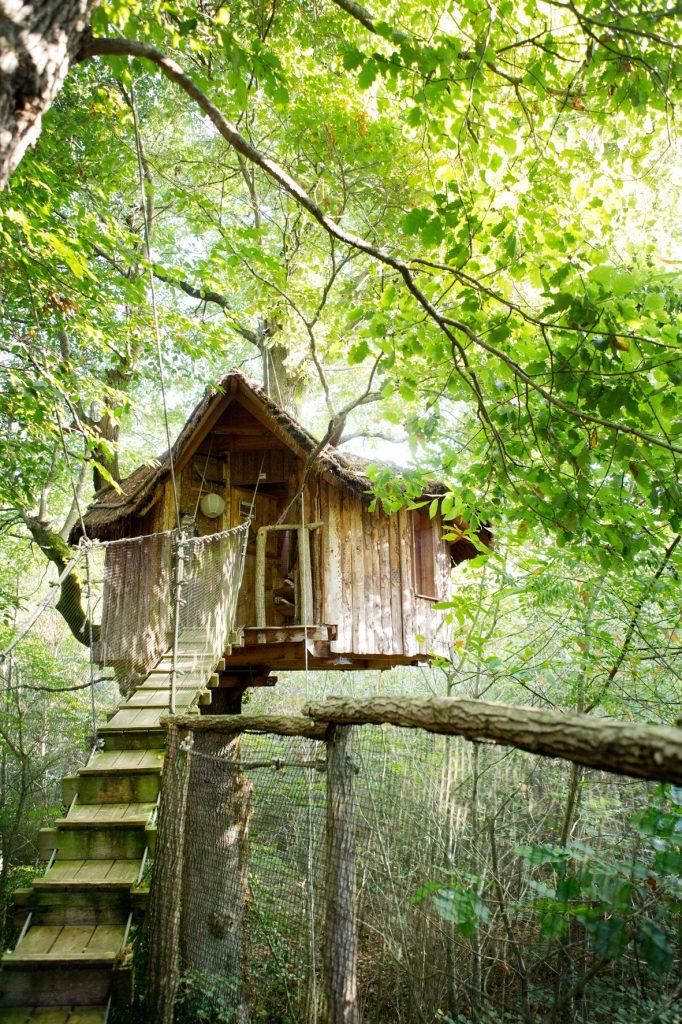cabane chêne charmant