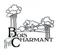 logo Château de bois charmant